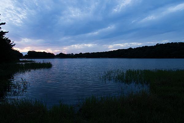 日が落ちた緑ヶ池
