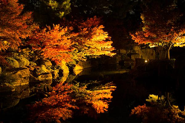 菖蒲園近くの池