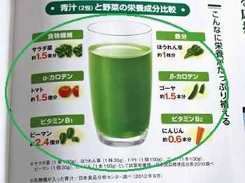 乳酸菌が入った青汁の栄養