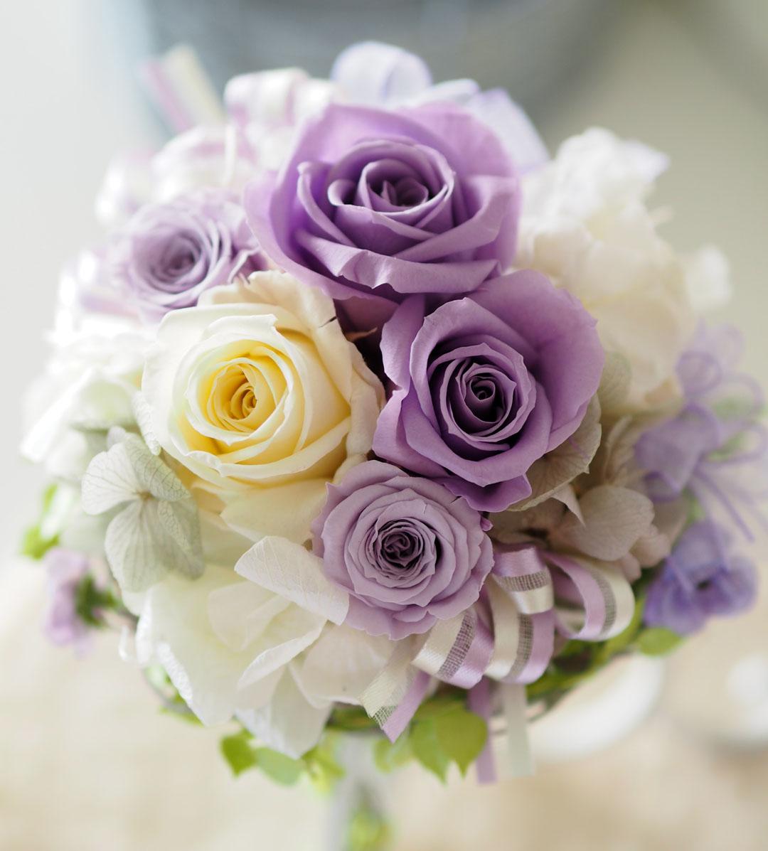 新作♪花色コース今月のお花です