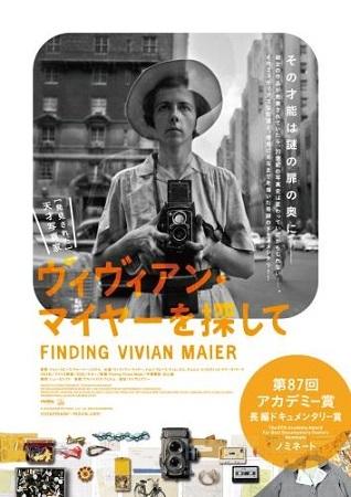 find-vivi-1.jpg