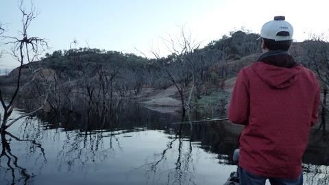 マーレーコッド釣行、2日目(釣行レポート、2)