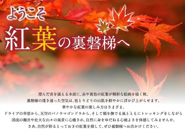 main_201611151742436a4.jpg