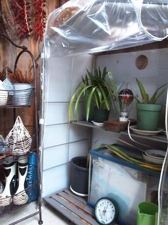 my-garden 180