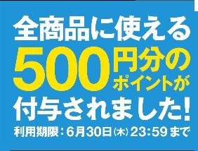 zozotown 500円分ポイント