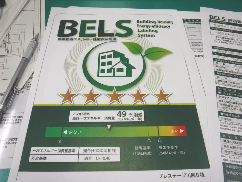 BELS02.jpg
