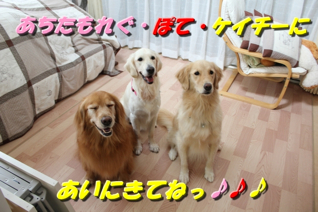 20161027112348a09.jpg