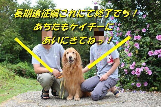 IMG_3848_20161025224400fb5.jpg
