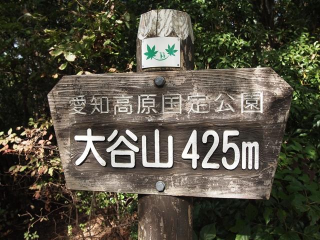 PA302840.jpg