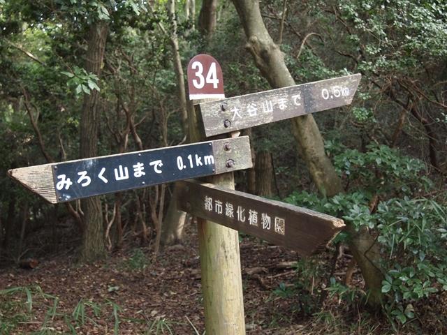 PA302844.jpg