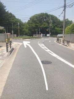 奈良 学園前 整体@グローバルメディカルのブログ-Image035.jpg