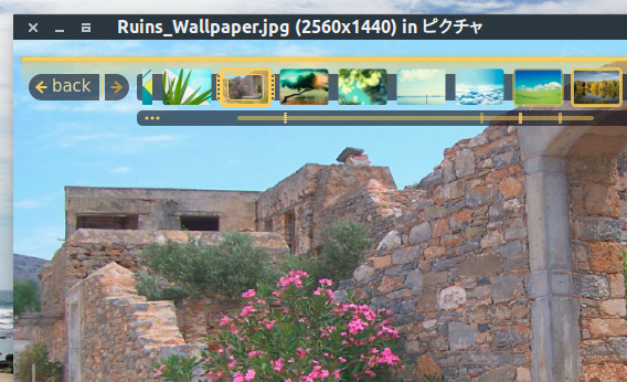 Fragment Image Viewer Ubuntu 画像ビューア HUD パネル
