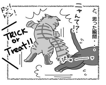 01112016_cat3.jpg