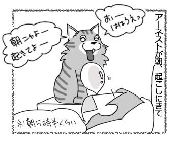 05122016_cat1.jpg