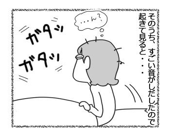 06122016_cat4.jpg