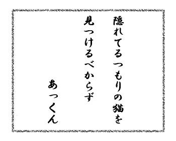 12112016_cat7.jpg