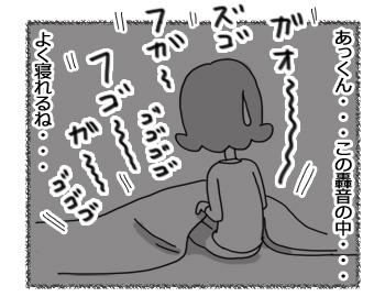 16122016_cat4.jpg
