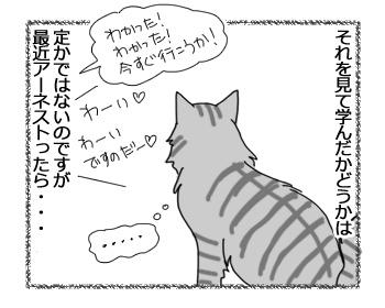 20122016_cat3.jpg