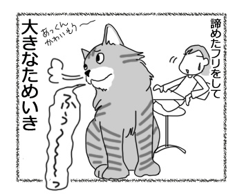 20122016_cat5.jpg