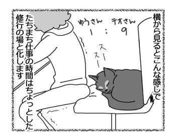 21112016_cat2miniB