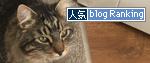 28102016_catBanner.jpg