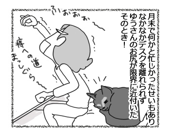 30112016_cat2.jpg