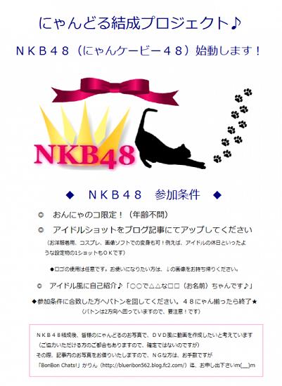 NKB48(にゃんケービー48)結成banner
