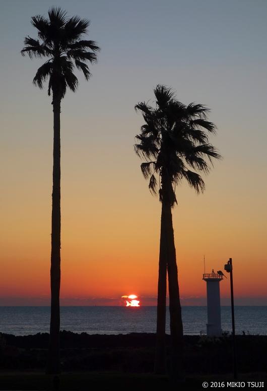 絶景探しの旅 - 0019 東シナ海の日の出(韓国 済州島)