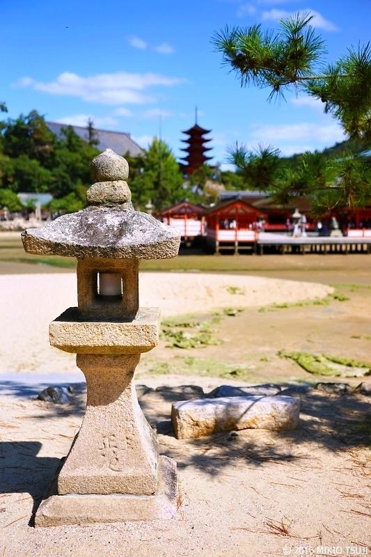 絶景探しの旅 - 0026 引き潮の厳島神社 (広島県 廿日市市 宮島町)