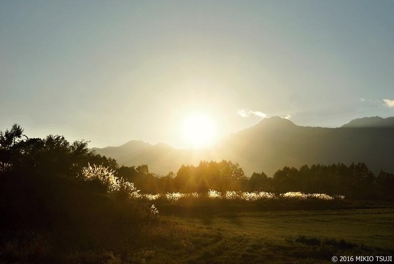 絶景探しの旅 - 0028 夕日に輝く (山梨県 北杜市)
