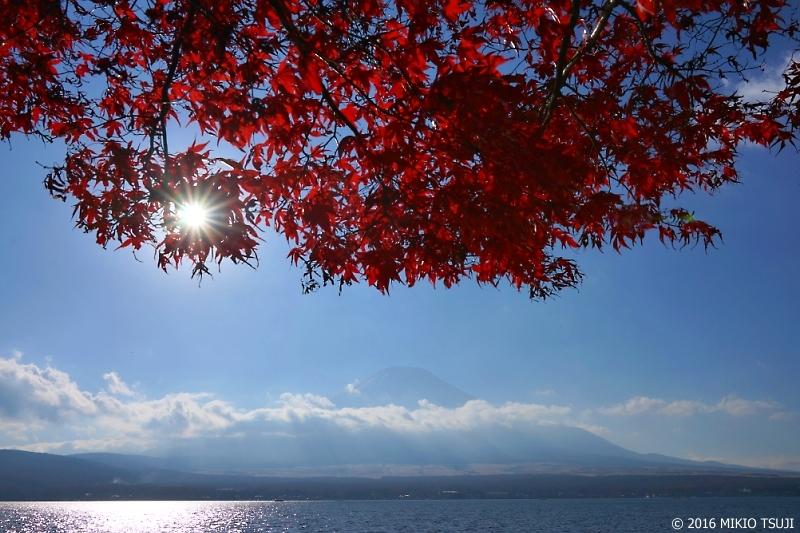 絶景探しの旅 - 0043 紅葉と山中湖 (山梨県  山中湖村)