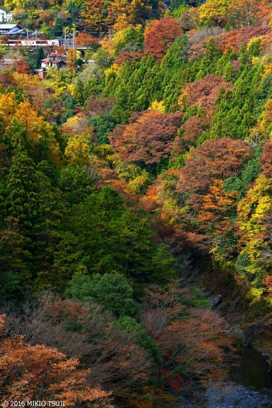 絶景探しの旅 - 0044 秋深し 桂川渓谷と成田エクスプレス (山梨県 大月市)